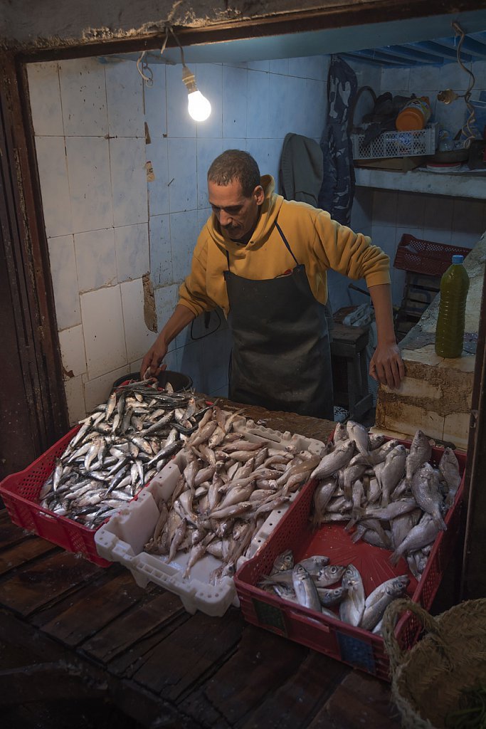 "Fes: Fish market in old town (""medina"")"