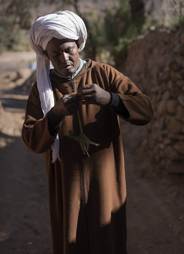 Mohammed folding camel from leaves in Fint oasis