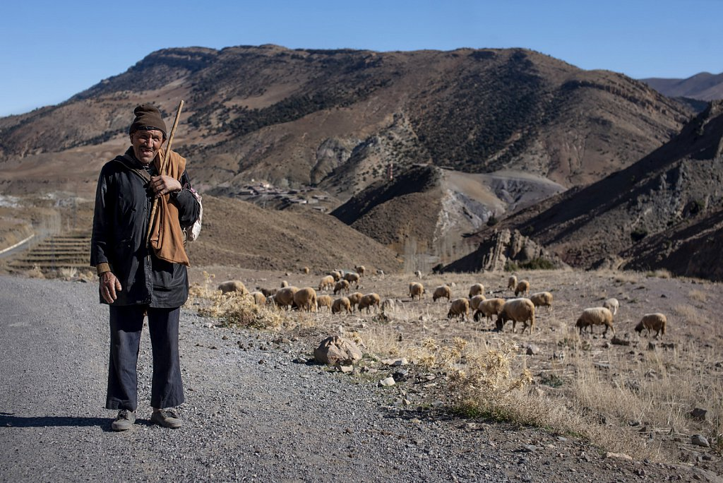 Shepherd in Atlas mountains