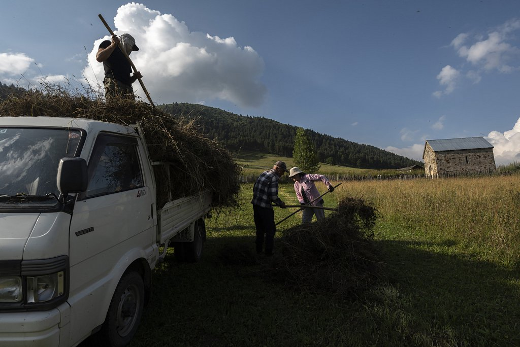 Collecting grass in Tsvirmi, Svaneti
